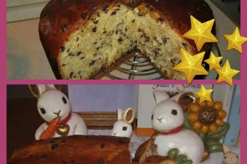 Panettone con gocce di cioccolato fatto in casa