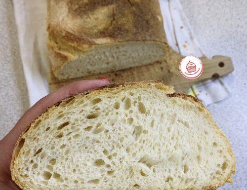 Pane semplice fatto in casa, con Lievito Madre