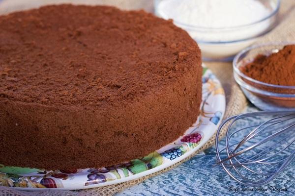 Ricetta Pan Di Spagna Al Cioccolato Bimby.Pan Di Spagna Al Cacao Soffice Ricetta Perfetta Come In Pasticceria