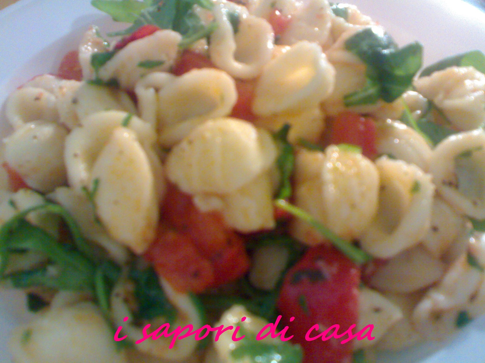 Orecchiette con sugo pomodorini e rucola