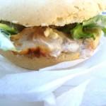 Kebab di pollo al forno con salsa allo yogurt – ricetta light