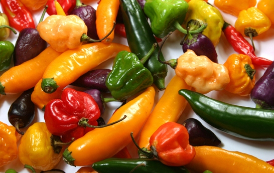 Guida ai chiles - guida ai peperoncini in Messico