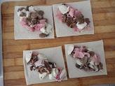 Cannelloni di pancarrè con funghi e prosciutto