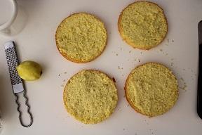 Torta albicocche e mascarpone