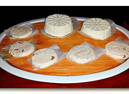 formaggio da siero del kefir