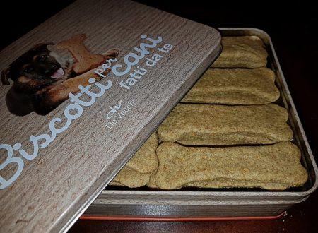 biscotti per cani, integrali alla carota con fiocchi di avena e olio di cocco