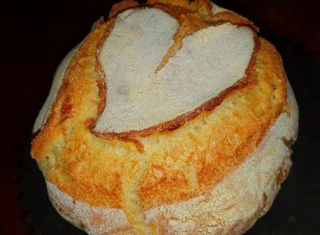 Pane di semola con pasta madre cottura in pentola