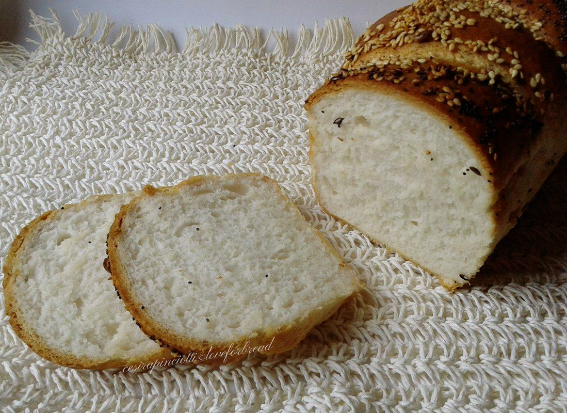 Pane senza glutine11