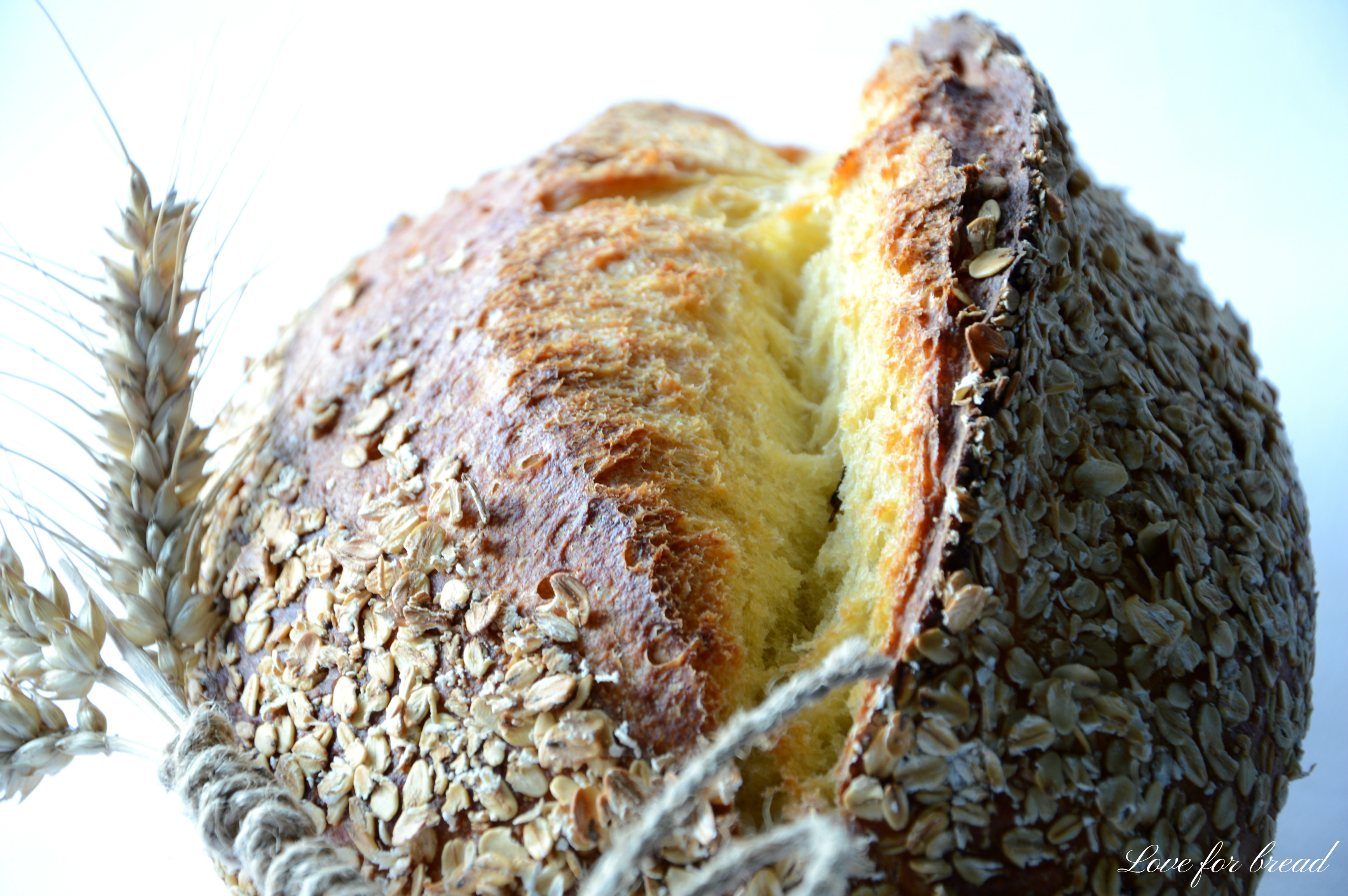 No Knead Bread Tutta Semola (pane Senza Impasto)