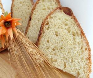 Pane senza impasto con licoli
