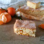 Torta rustica di clementine con Bimby