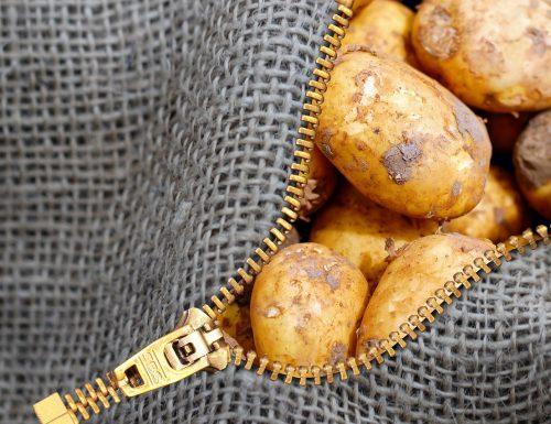 Come conservare le patate per evitare che diventino verdi o germoglino