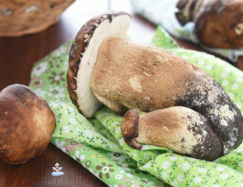 Come congelare i funghi porcini