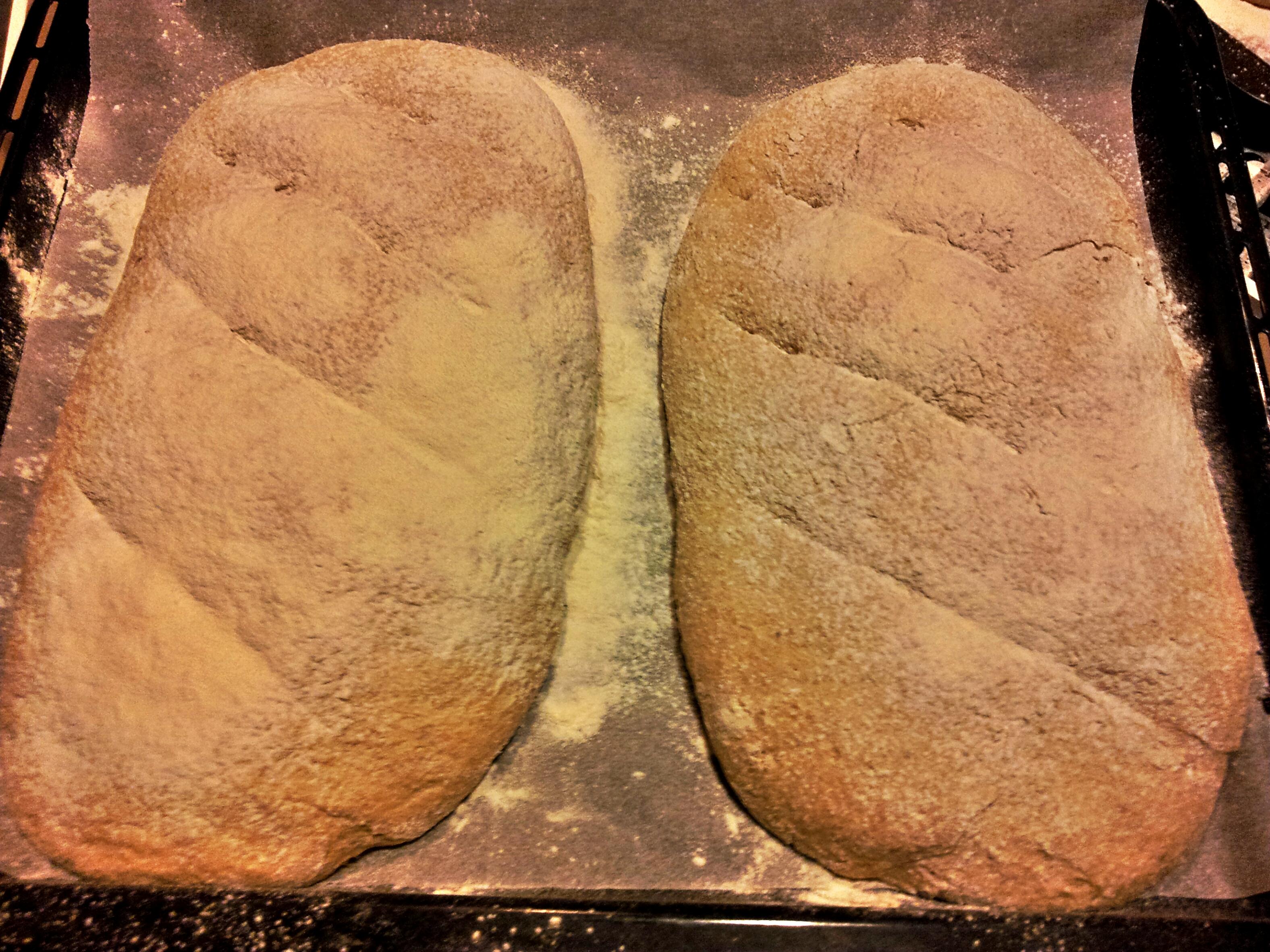 Pane integrale fatto in casa facile