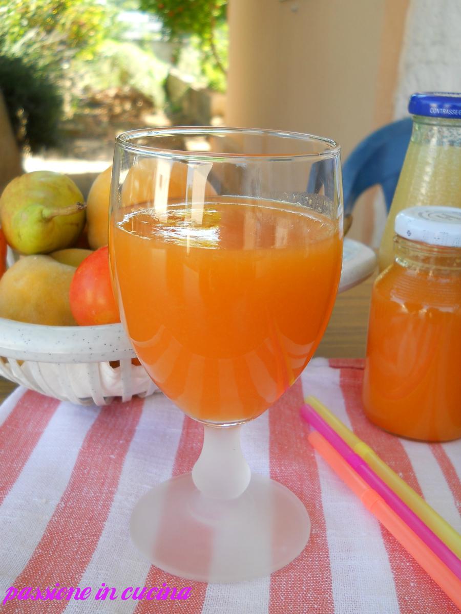 succo di frutta fatto in casa-ricetta conserve