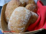 ciabatta con poolish, pane fatto in casa, panini