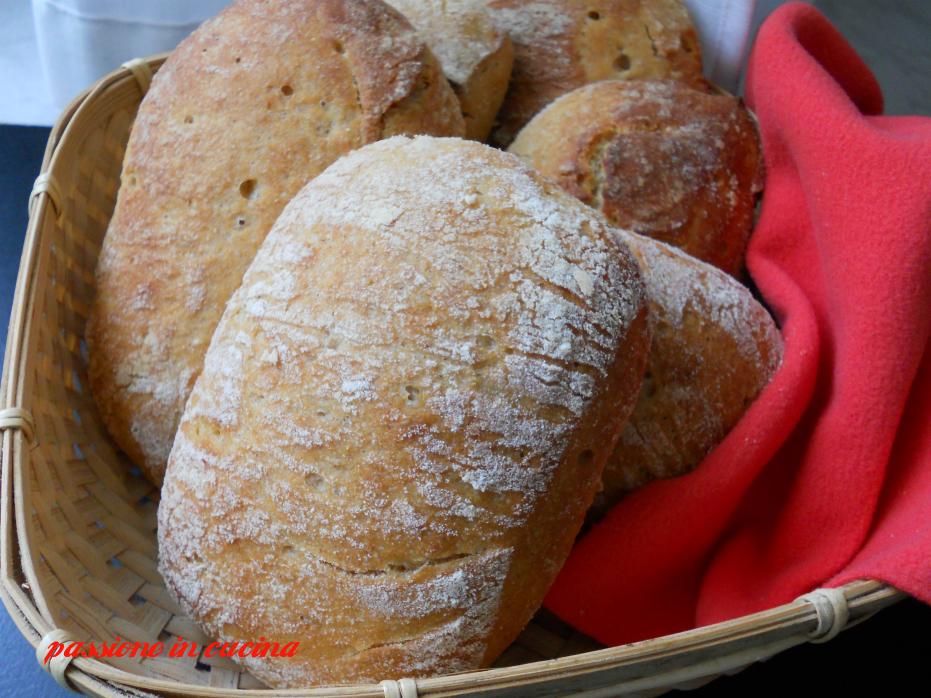 ciabatta con poolish, pane fatto in casa, panini