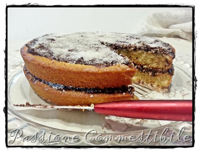 torta cocco e nutella1
