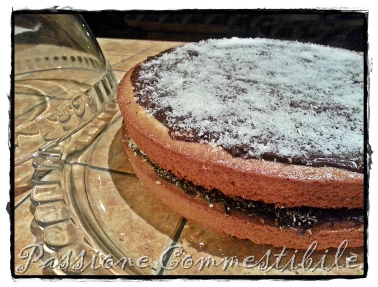 torta cocco e nutella12