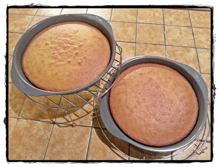 torte al cocco di 400 gr l'una