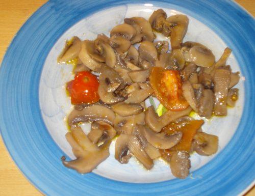 funghi champignon allegri