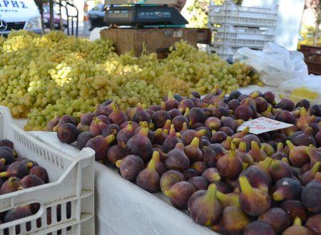 La spesa di stagione – i prodotti del mese di settembre