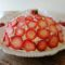 Zuccotto alle fragole