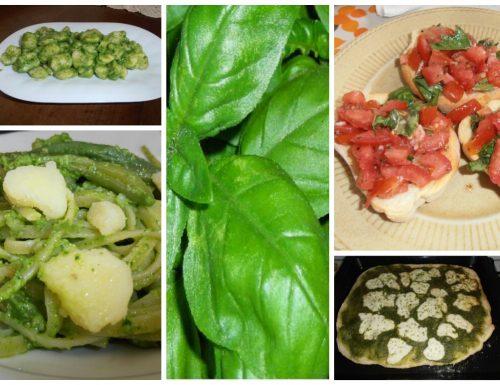Basilico: proprietà, ricette, pesto, come conservarlo.