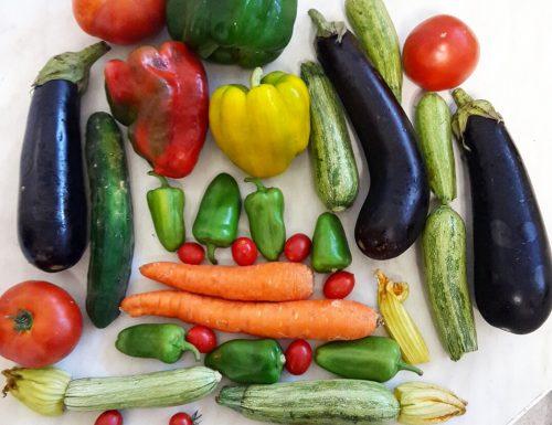 Dieta sana – Ricette veloci, leggere ed estive
