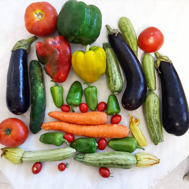Dieta sana - Ricette veloci, leggere ed estive