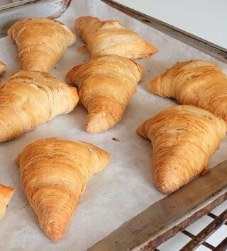 sfogliatelle ricce di pasta fillo (phyllo pastry) cotte