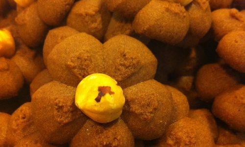 Biscotti ovis molis al cacao e…………..nocciole