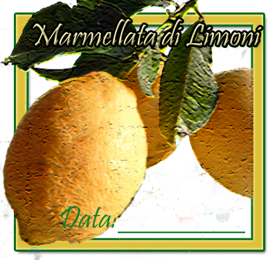 Etichette quadrate limoni in PDF