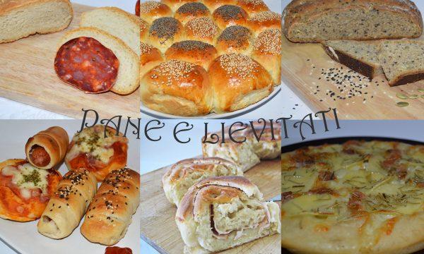Pane e lievitati, raccolta di ricette