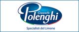 banner-polenghi