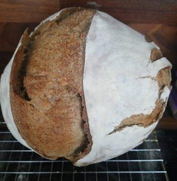 Pane facile, ricetta con licoli