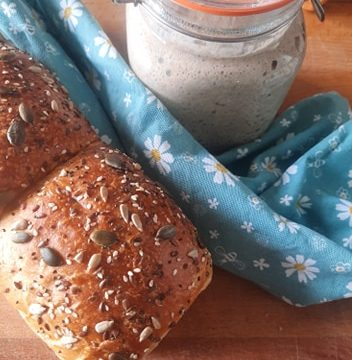 Pan bauletto di segale, ricetta con licoli
