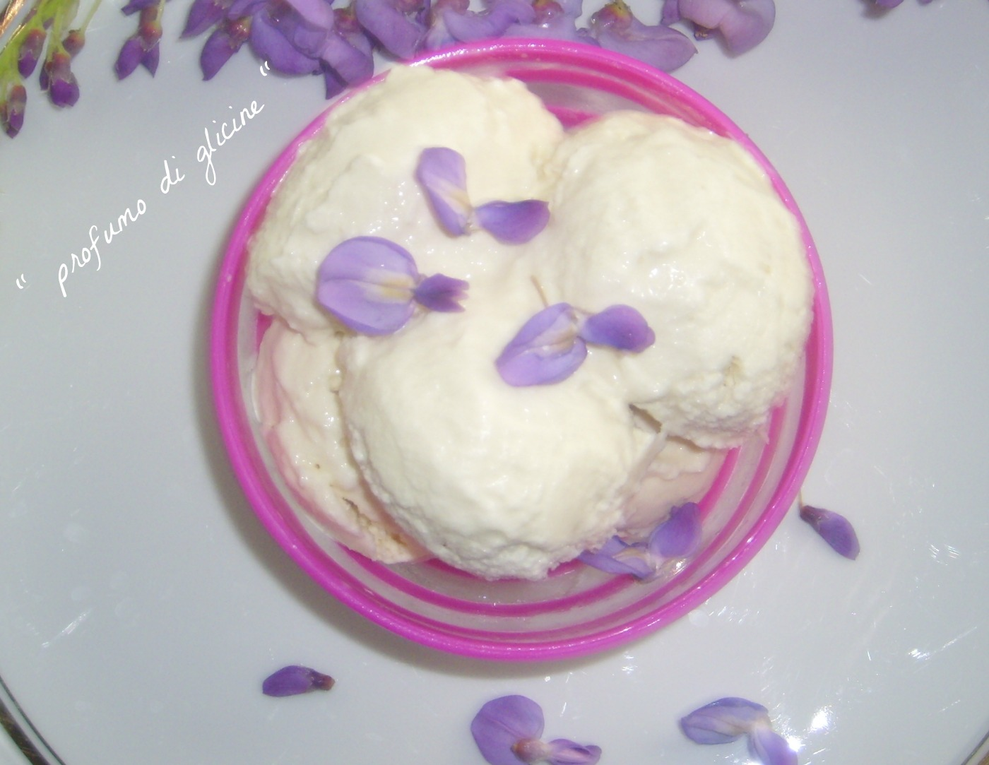 gelato ai fiori di glicine ricetta con o  senza gelatiera da profumo di glicine