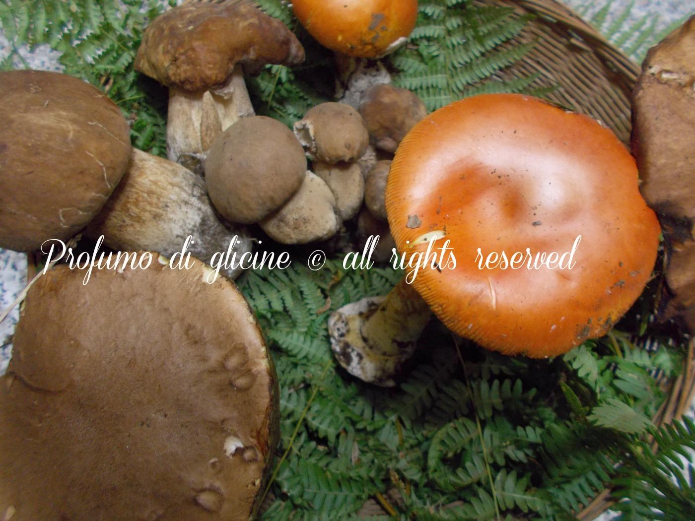 crema di patate e funghi ricetta primo piatto autunnale