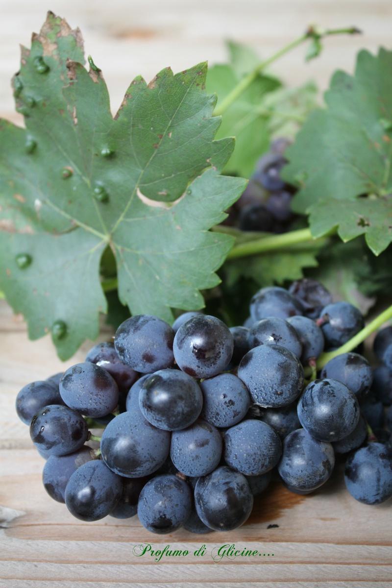 Ciaccia all'uva - Ricetta toscana