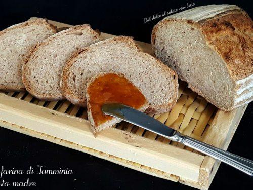 Pane con farina di tumminia e pasta madre