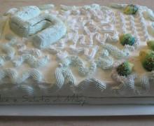 Torta decorata con i Ricci, con  Panna e Nutella