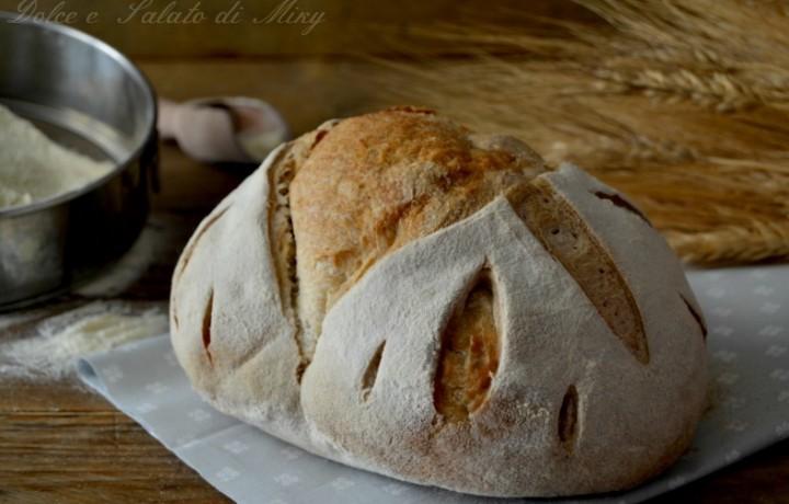 Pane con farro monococco