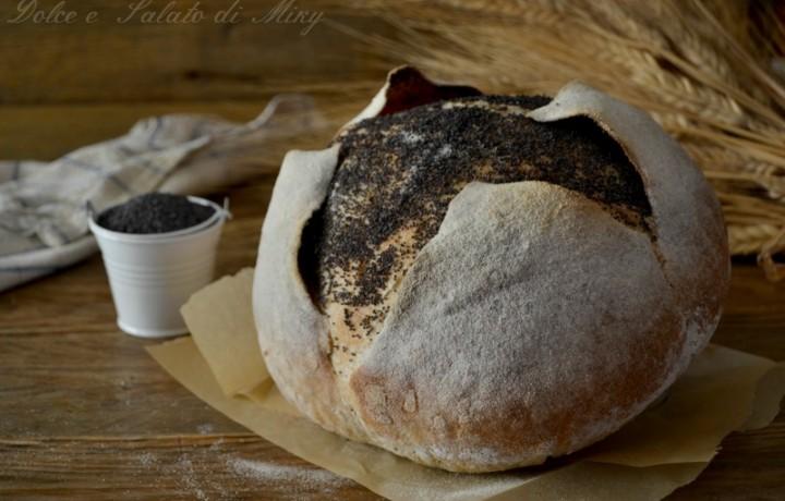 Pane incamiciato ai semi di papavero