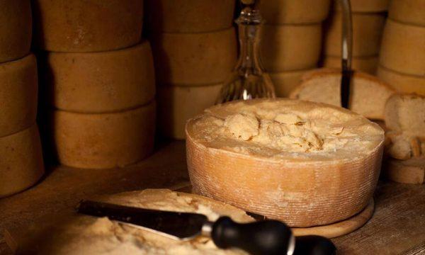 Sagra del formaggio Mandas