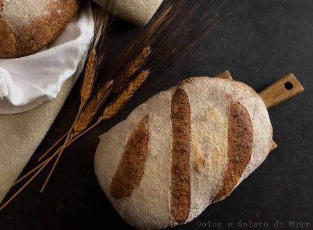 Pane integrale con autolisi