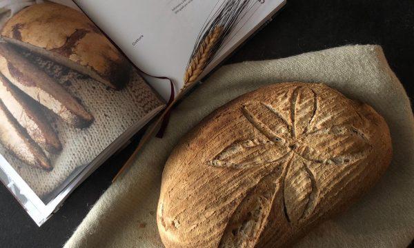 Pane rustico con lievitino