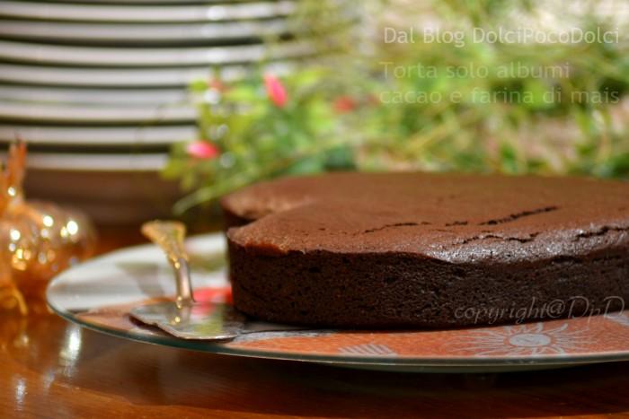 Torta Solo Albumi Cacao e Farina di Mais