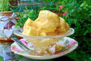 Gelato albicocca senza gelatiera