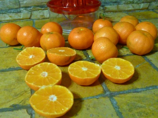 Crema al mandarino senza uova latte zucchero